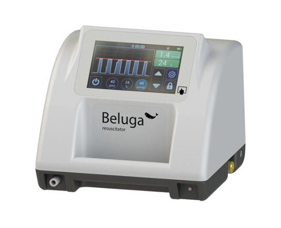 beluga-01